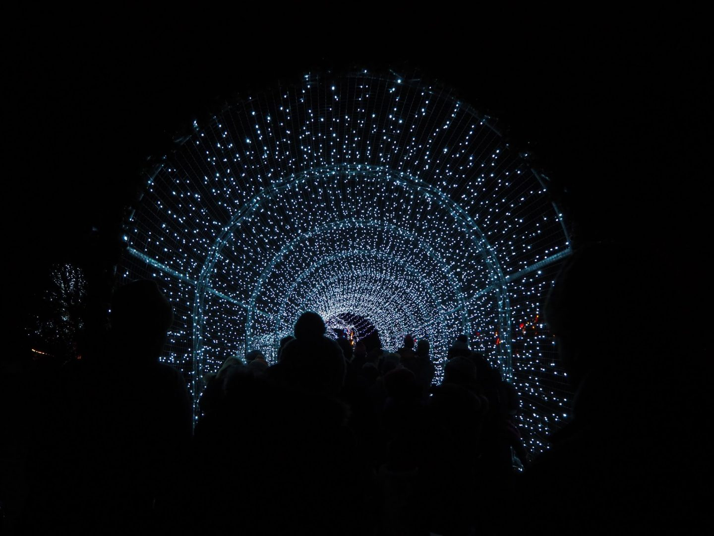 celebrate- light tunnel