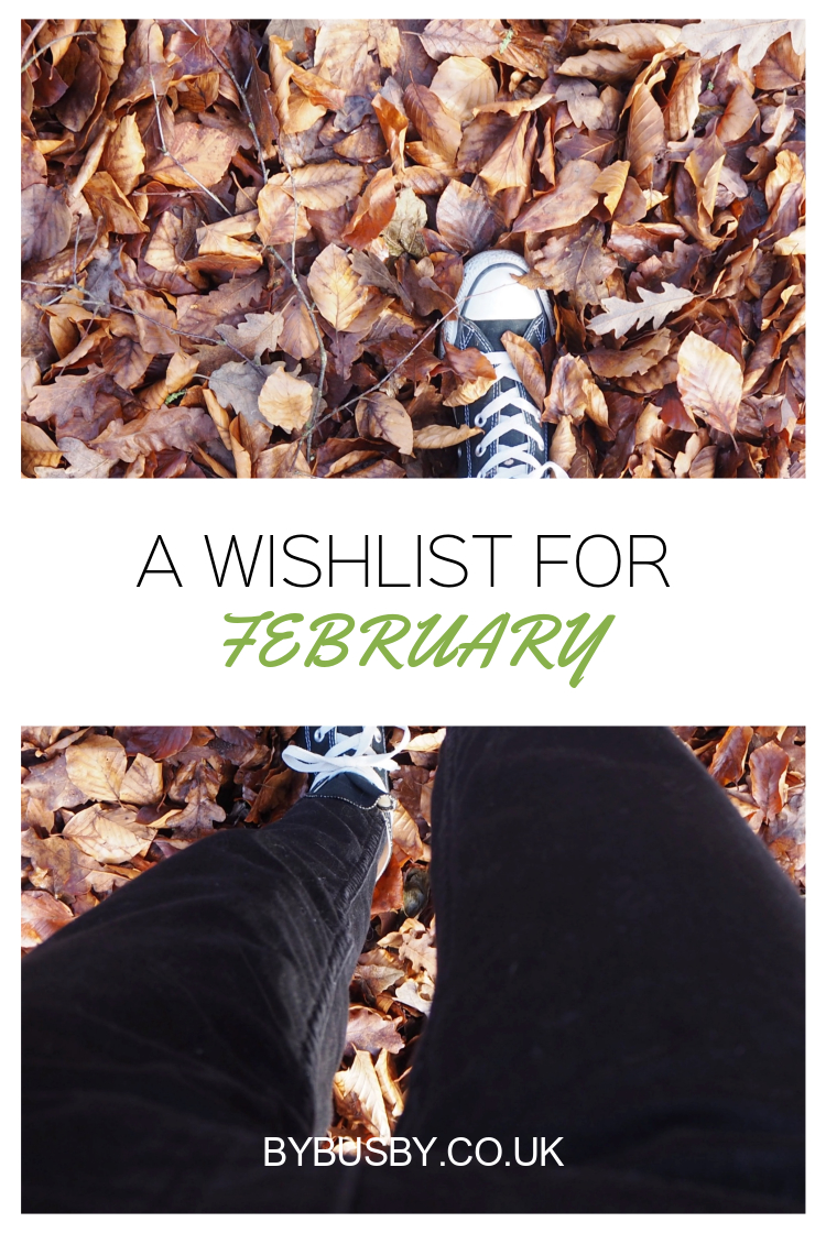 Wishlist for February