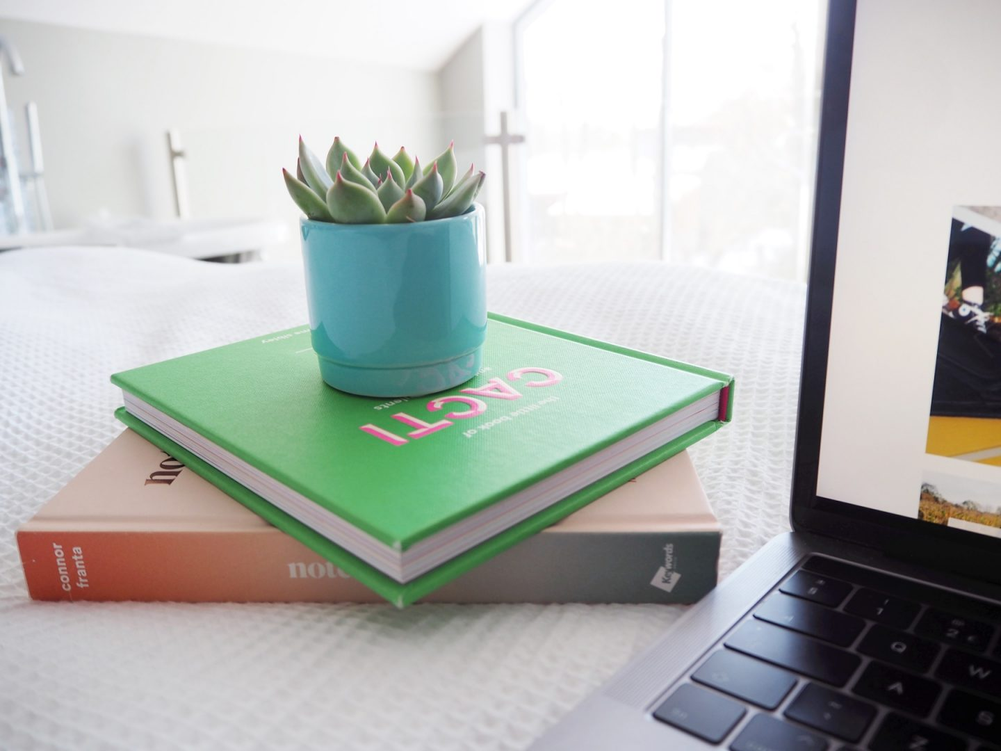 From blogger to WordPress - book & cacti