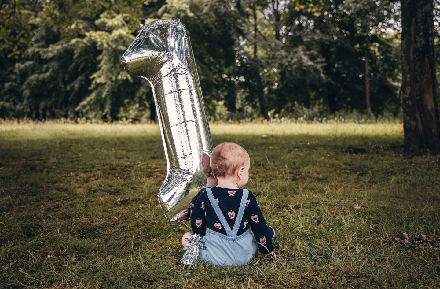 A Whole Year Of Motherhood - jasper sat next to a giant silver number one balloon